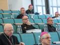013-377-zebranie-plenarne-kul-lublin-13102017_37640353682_o