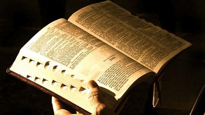 Znalezione obrazy dla zapytania niedziela słowa bożego 2020